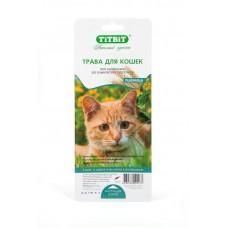 TitBit Трава для кошек пшеница