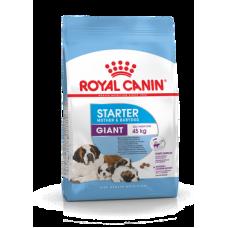 Royal Canin Giant Starter M&B,начальный корм для щенков крупных пород,уп.15 кг.