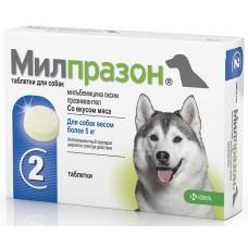 Милпразон таблетки для собак весом более 5 кг от гельминтов, 1 таблетка