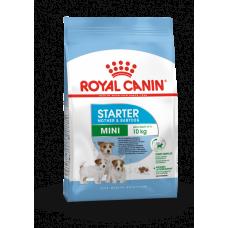 Royal Canin Mini Starter M&B, Роял Канин Мини Стартер, начальный корм для мелких щенков, уп. 1 кг