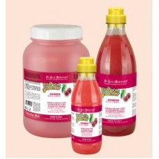 Iv San Bernard Fruit Black Cherry,шампунь для короткой шерсти с протеинами шелка,1000 мл.