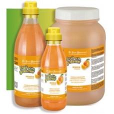 Iv San Bernard Fruit Orange,шампунь для слабой выпадающей шерсти с силиконом,1000 мл.
