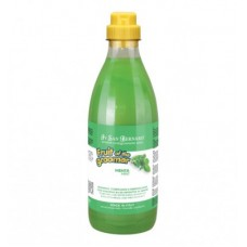 Iv San Bernard Fruit Mint,шампунь для любого типа шерсти с витамином В6,1000 мл.