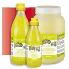 Iv San Bernard Fruit Ginger&Elderbery,шампунь для любого типа шерсти против раздражений и перхоти,1000 мл.